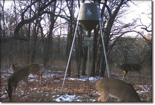 600# Automatic Deer Feeder